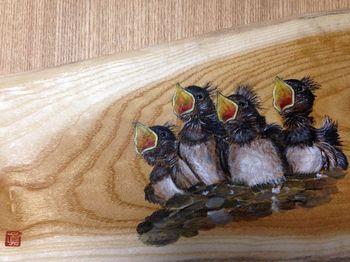 ツバメの幼鳥r.jpg