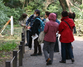 2113年3月13日自然植物園最終.jpg