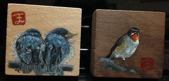 ツバメ幼鳥とノゴマ(10).JPG
